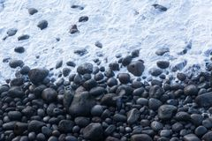 A black bird flying over a stony beach in Iceland royalty free stock images