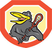 Black Bird Lacrosse Player Shield Cartoon Royalty Free Stock Photography