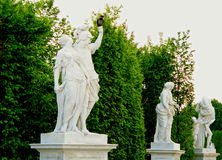 Black Bird Perching on the Hand of a Beautiful White Statue in Schonbrunn Garden, Vienna Stock Images
