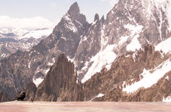 Black bird and rocky mountains Royalty Free Stock Photos