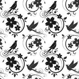 Black birds and blossoms seamless pattern. Vector. Black birds and blossoms silhouettes. seamless pattern on white background Royalty Free Stock Images
