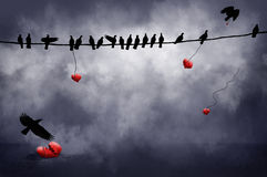 Black Birds with hearts. Black birds on a wire and flying carry red hearts with them.  One lies on the ground broken Stock Images