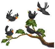 Black birds. Illustration of many black  birds on a branch Stock Image