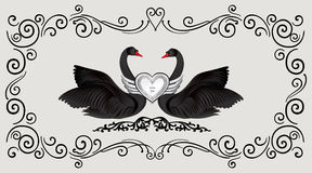 Black birds in love with floral decoration. Couple of swans silh. Ouette. Two love hearts concept illustration. Good for wedding, St Valentine greeting card Royalty Free Stock Images