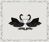 Black birds in love with floral decoration. Couple of swans silh. Ouette. Two love hearts concept illustration. Good for wedding, St Valentine greeting card Stock Images