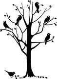 Black birds on tree. Tree silhouette with several black birds perched on it Royalty Free Stock Image