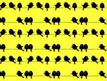 Black birds on yellow background, repeated pattern Stock Image