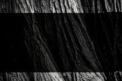 Black, Black And White, Monochrome Photography, Tree Stock Photo