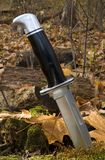 Black blade. Hunting knife in a stump in the fall stock images