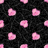 black blommar orchiden Arkivbild