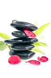 black blommar zen för petalsredstenar Arkivbilder