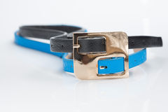 Black blue belt with double buckle Royalty Free Stock Photo