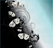 Black and Blue Butterflies. White butterflies on a gradient black/blue/white background with flowery patterns stock illustration