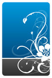 Black and blue floral design card. With grunge pattern Stock Photography