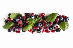 Black-blue and red berries isolated on white. Ripe blackberries, blueberries, raspberries, cornels and basil leaves on white backg. Round. Berries with copy Royalty Free Stock Images