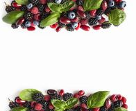 Black-blue and red berries isolated on white. Ripe blackberries, blueberries, raspberries, cornels and basil leaves on white backg. Round. Berries at border of stock photos
