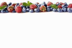 Black-blue and red berries. Ripe raspberries, blueberries with mint on white background. Berries at border of image with copy spac. E for text. Background Royalty Free Stock Image