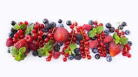 Black-blue and red fruits. Ripe red currants, strawberries, raspberries, blackberries, blueberries and blackcurrants on white back. Ground. Berries with copy Stock Image