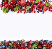 Black-blue and red fruits. Ripe red currants, strawberries, raspberries, blackberries, blueberries and blackcurrants on white back. Ground. Berries at border of Stock Image