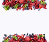 Black-blue and red fruits. Ripe red currants, strawberries, raspberries, blackberries, blueberries and blackcurrants on white back. Ground. Berries at border of Royalty Free Stock Images