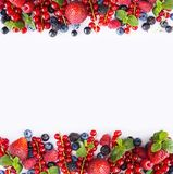 Black-blue and red fruits. Ripe red currants, strawberries, raspberries, blackberries, blueberries and blackcurrants on white back. Ground. Berries at border of Stock Images