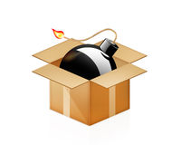 Black bomb burning in cardboard box on white Stock Photography