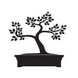 Black Bonsai Tree. Vector Illustration. royalty free illustration