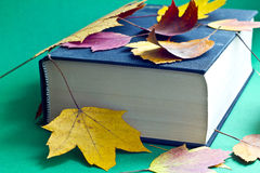 This is black book with autumn leaves. Royalty Free Stock Photos