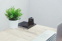 Black Book With Green Potted Plant in White Vase on Brown Wooden Table Stock Image