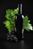 Black bottle. Wine composition: vine and bottle of wine Stock Photo