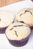Black bottom cupcake Stock Photography
