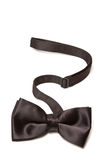 Black bow tie Stock Images