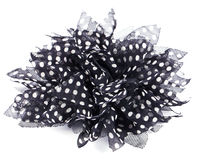 Black bow with white dots Royalty Free Stock Photography