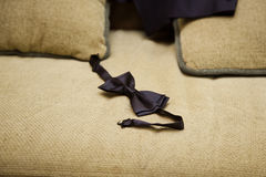 Black bowtie, groom fees, get ready for work, sense of style Stock Images