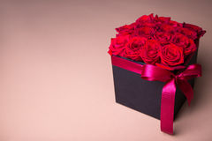 Black box with beautiful red rose flowers over beige background Royalty Free Stock Images