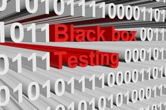 Black box testing. In the form of binary code, 3D illustration Stock Photos