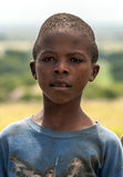 Black boy looking Stock Images