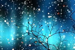 Black branch without leaves against the blue of the Northern lights and falling snow. Stock Photo