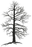 Black branchy tree with roots Stock Photography