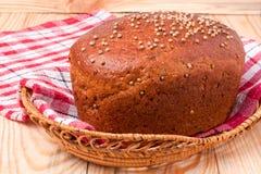 Black bread with fresh coriander closeup. Black bread with fresh coriander seeds closeup Stock Images