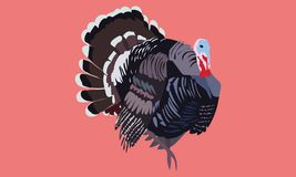 Black brown grey blue red cute turkey art royalty free illustration