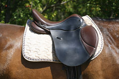 Black and brown leather saddle on back of a horse Royalty Free Stock Images