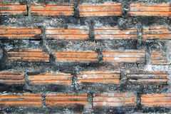 Black-brown wall from bricks for background. Stock Images