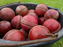A black bucket tub full of red leather cricket balls. On the collection red leather cricket ball balls shiny round seam worn and covered in marks scuffs scrapes stock image