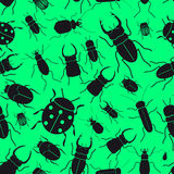 Black bugs and beetles green seamless pattern Royalty Free Stock Photography