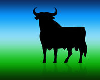 The black bull Royalty Free Stock Image