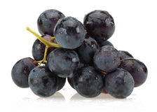 Black bunch of grapes Stock Image