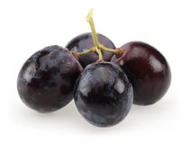 Black bunch of grapes Stock Photography