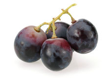 Black bunch of grapes Stock Photos