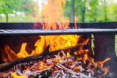 black burned charcoal bbq grid fire natural background Royalty Free Stock Photo